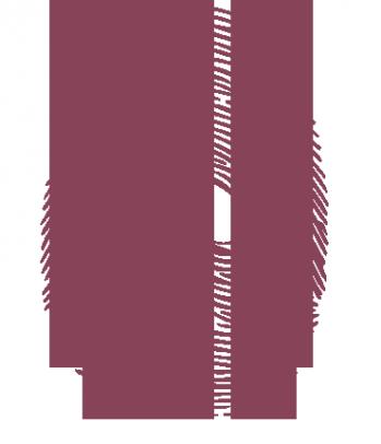 Impronta_codice